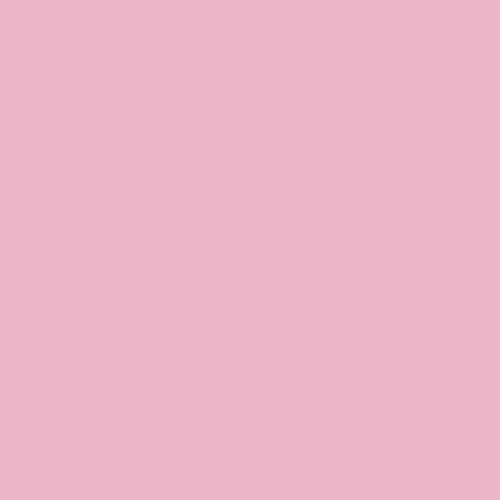 Bois de Rose Ballet 365